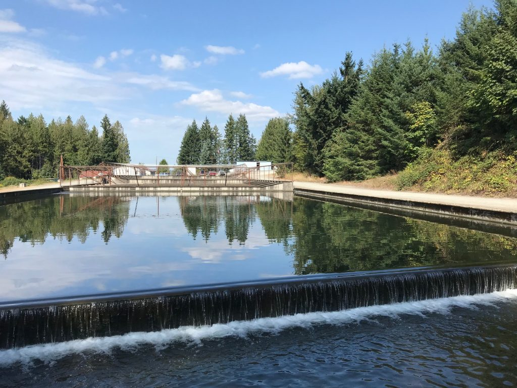 A rainbow trout farm in Washington State. A dispenser that allows farmers apply peracetic acid to fish tanks and raceways safely and effectively won Alltech's inaugural Inventor prize (Credit: Liza Mayer)